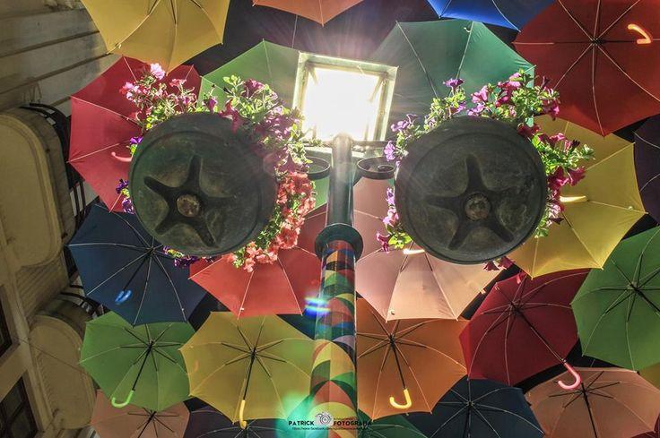 Our colorful umbrellas @Agitagueda  #agitagueda #agitagueda2016 #agitaguedaartfestival #agueda #streetart #festival #urbanart #umbrellaskyproject