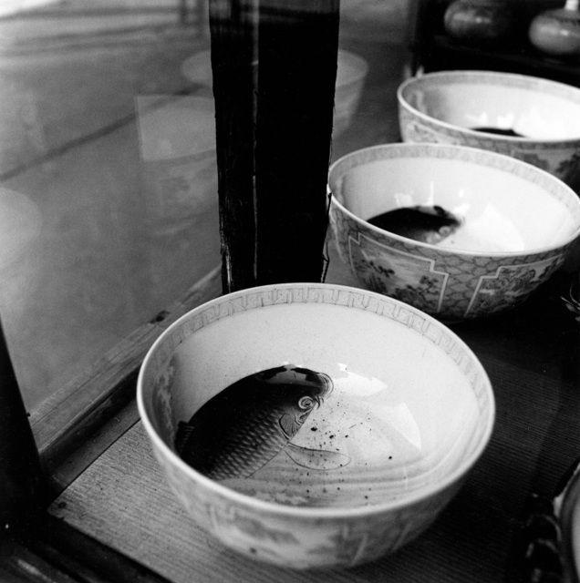 Issei Suda, Ningyo-cho, Nihonbashi (1977)