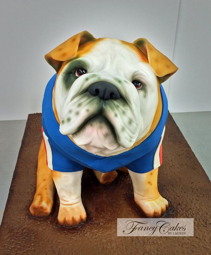 English Bulldog cake by Fancy Cakes by Lauren.