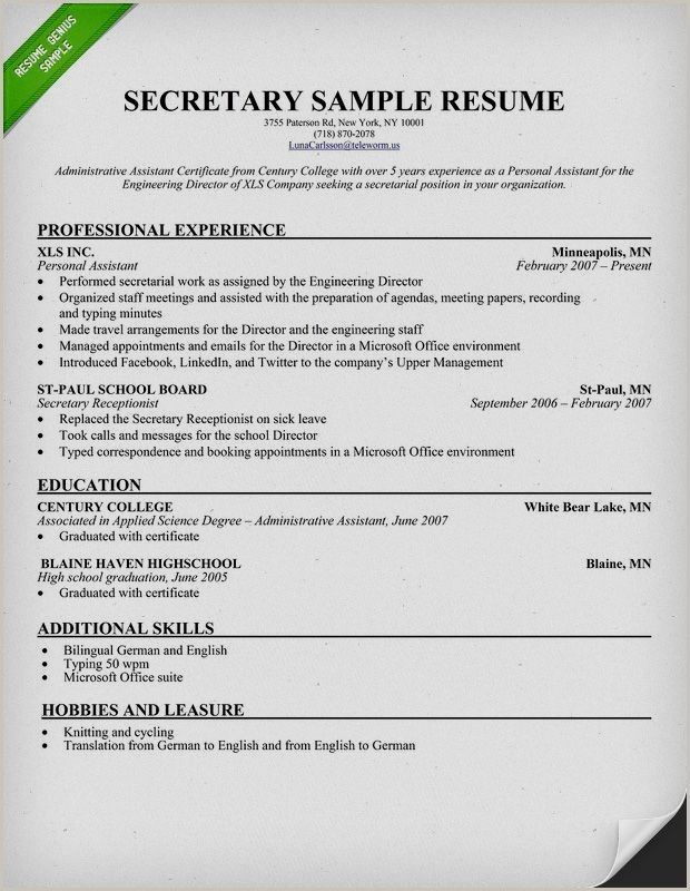 Professional Resume Example Instant Download 1 Page Resume Example For Ms Word Diy Resume Examp Resume Examples Cover Letter For Resume Basic Resume Examples