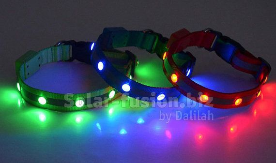 Led Dog Collar Glow in the dark collar by SolarFusion on Etsy