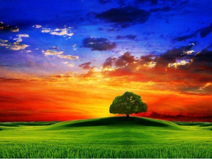 bing desktop wallpaper sunset - photo #17
