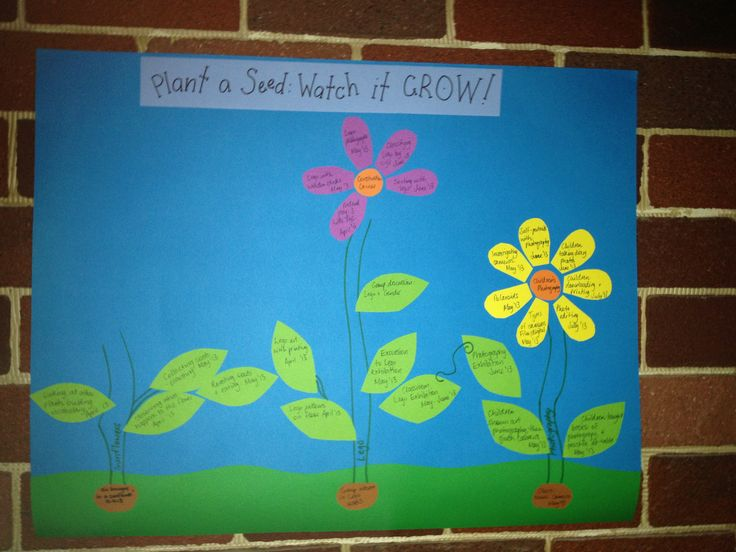 A design for your EYLF programme web. New ideas are represented by seeds, which 'grow' into plants. Activities are represented by leaves, and when these branch into your classroom learning centres, fill in a flower!