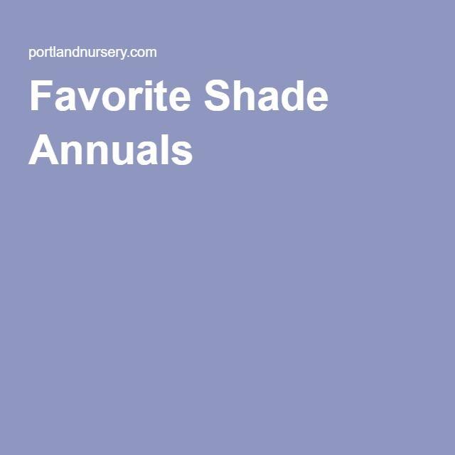 Favorite Shade Annuals