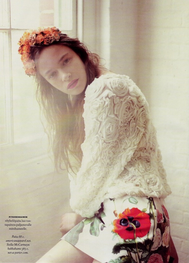crown + light: Rose, Fashion, Idea, Style, Color, Photography, Flower, Floral