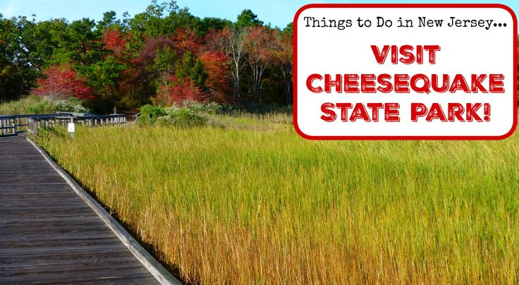 Explore Nature and History at Cheesequake State Park! Looking for fun things to do in Central NJ? Why not check out Cheesequake State Park? This unique New Jersey park, easily accessed from the Garden State Parkway, offers visitors the opportunity to explore two distinctly different ecosystems while enjoying a variety of outdoor activities. This post … Continue reading Things To Do in New Jersey – Visit Cheesequake State Park! →
