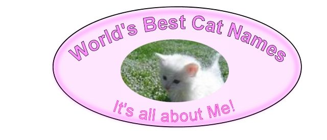 World's Best Cat Names....I've already chosen name for my baby! :)