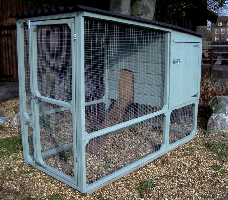 Chicken coop - needs to be wider and have the WHOLE back as 2 swing style doors instead of just the side for easier access (2 sides so you can do 1/2 at a time without them all jumping out) :P