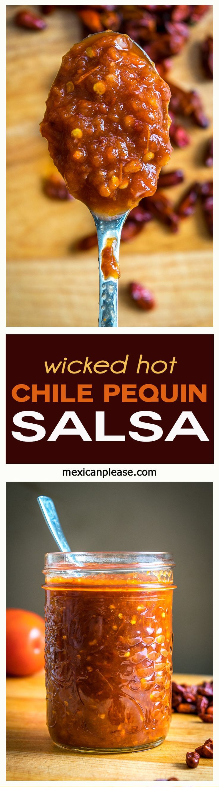 This Wicked Hot Chipotle Chile Pequin Salsa relies on Chipotles for flavor and Chile Pequins for heat. It's like your own personal hot sauce!  http://mexicanplease.com
