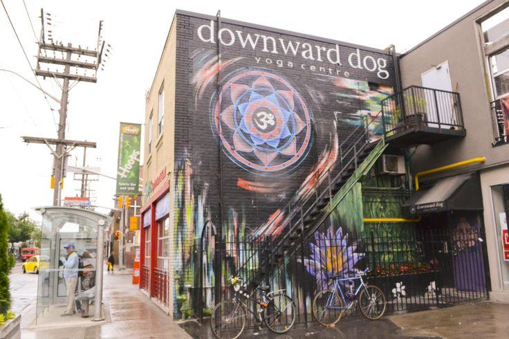 Downward Dog Yoga Studio