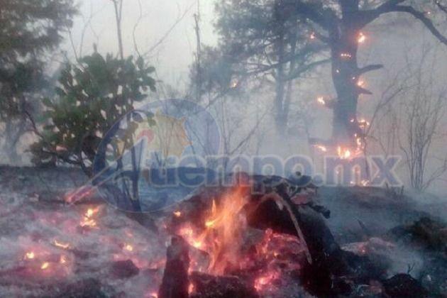 El gerente estatal de la Conafor en Michoacán aseguró que ya fueron apagados los siniestros, incluyendo el conato de incendio registrado por la noche; asegura que en el Cerro de ...