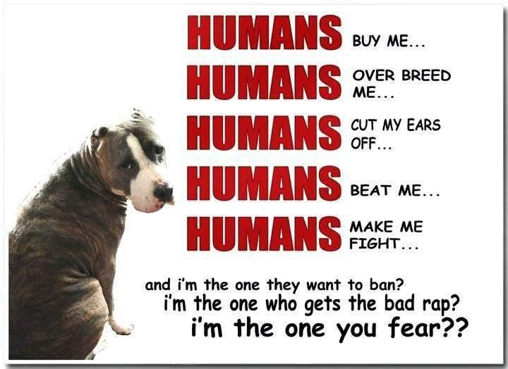 Very true. I am a proud supporter of *well trained* pitbulls. It's the stupid humans we need to ban.: Pitt Bull, Dogs, Pitbull, Pet, So True, Pit Bull, Truths, Animal, Human