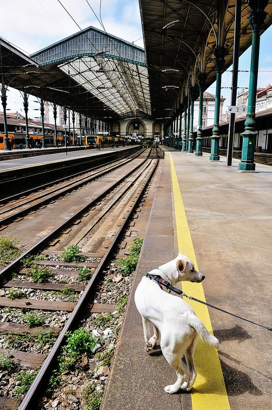 São Bento Railway Station, Porto