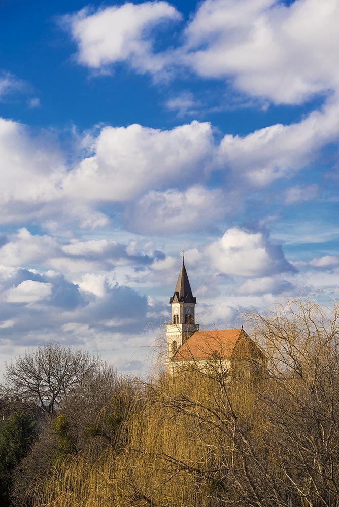 Tóth Gábor Egy kis tavasz a télben Több kép Gábortól: www.facebook.com/SzketiPhoto