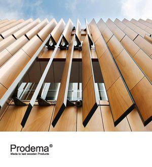 prodema-slide.jpg 300×330 pixels