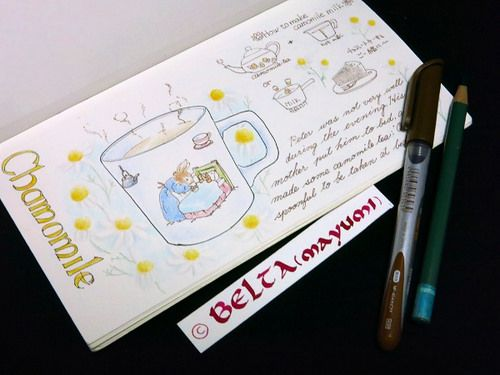 2015_03_04_chamomile_01_s  How to make camomile milk  for this drawing I used : Faber castell polychromos Holbein Midori traveler's notebook © Belta(WAKABAYASHI Mayumi)