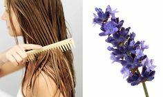 Lavanta ile hızlı saç uzatma