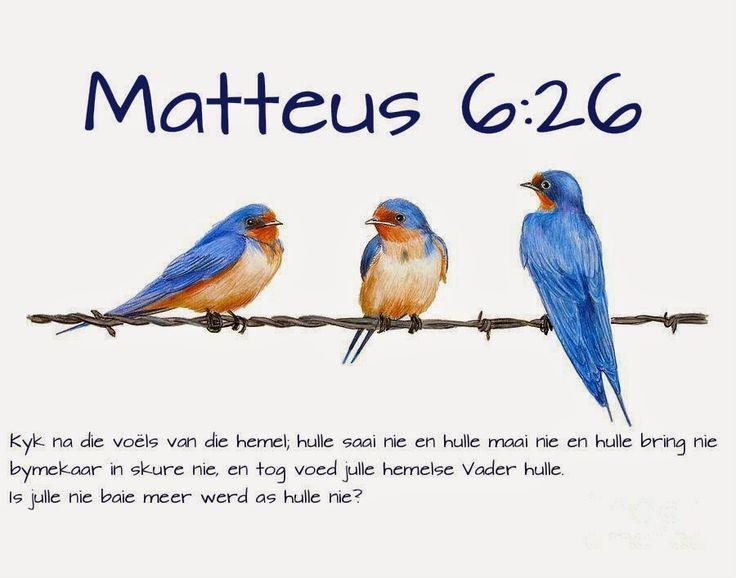 Afrikaanse Inspirerende Gedagtes & Wyshede: Matteus 6:26