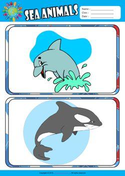 Sea Animals ESL Flashcards Set for Kids