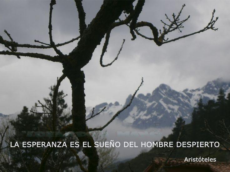 #reflexiones La #Esperanza es el sueño del hombre despierto de Aristóteles. Una #frase para #pensar #photos