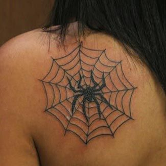 Spider web tattoos on tits