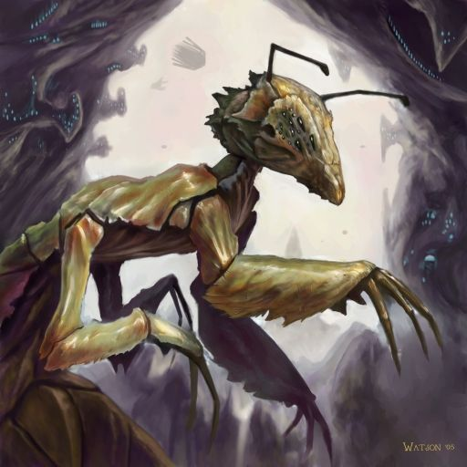 The Xi'Chung are a psychotic race of insects, who are devoted to the destruction of all life other than their own. They can be seen in the Space Empires V.