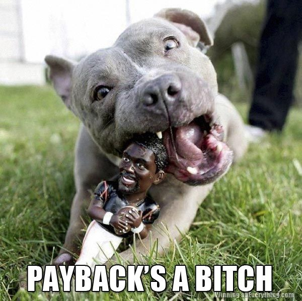 Gotta love this one!: Dogs Toys, Chewing Toys, The Real, Poetic Justice, Pitbull, Vicks Chewing, Pit Bull, Michael Vicks, Animal