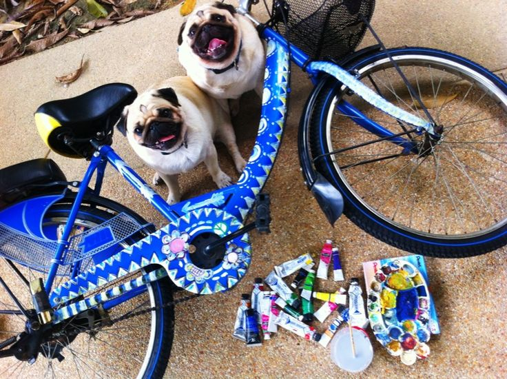 89 Best Funky Painted Bicycles Images On Pinterest Cities