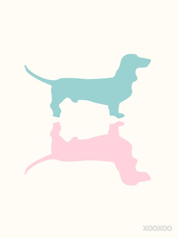 Pastel Dachshunds Pattern