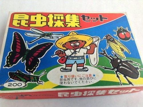【標本セット】昆虫採集セット