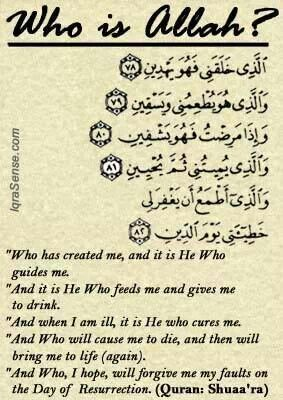 Qur'an Ash-Shu`arā' (The Poets)  26:78-82:  Who created me, and He [it is who] guides me. And it is He who feeds me and gives me drink. And when I am ill, it is He who cures me And who will cause me to die and then bring me to life And who I aspire that He will forgive me my sin on the Day of Recompense.""