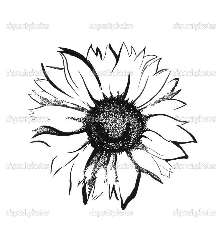 Sunflower...my favorite