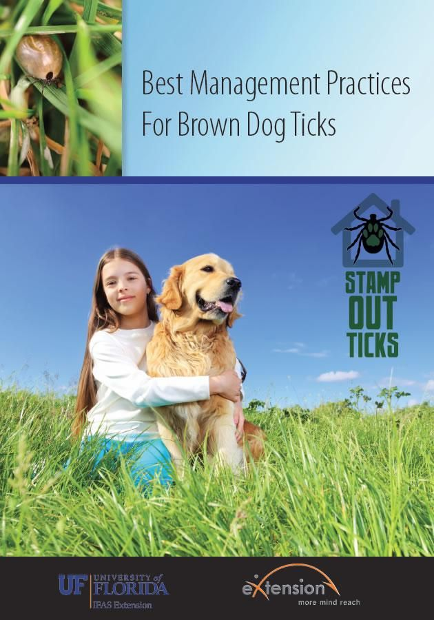Best Management Practices for Brown Dog Ticks     - eXtension and University of Florida