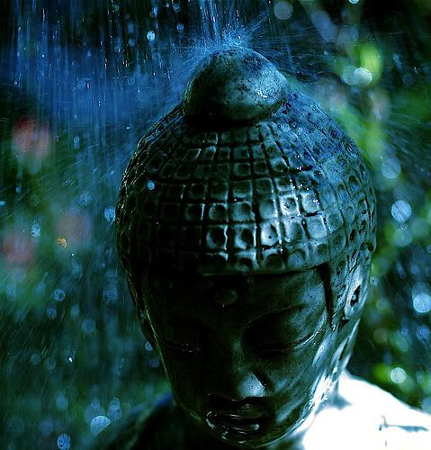 """As rain falls equally on the just and the unjust, do not burden your heart with judgements but rain your kindness equally on all. ""   ― Gautama Buddha"