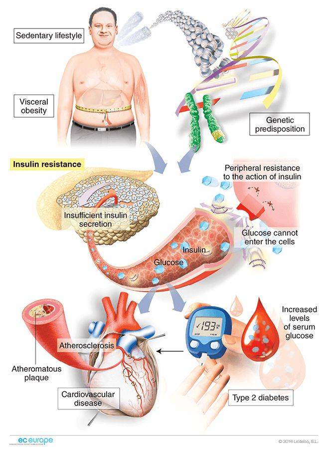 what are the effects of cardiovascular disease on the human body how can cardiovascular disease be p This study aims to characterize the compositional and functional effects of several nutritional, neutraceutical, and pharmaceutical cardiovascular disease interventions on the gut microbiome, through metagenomic and metabolomic approaches.