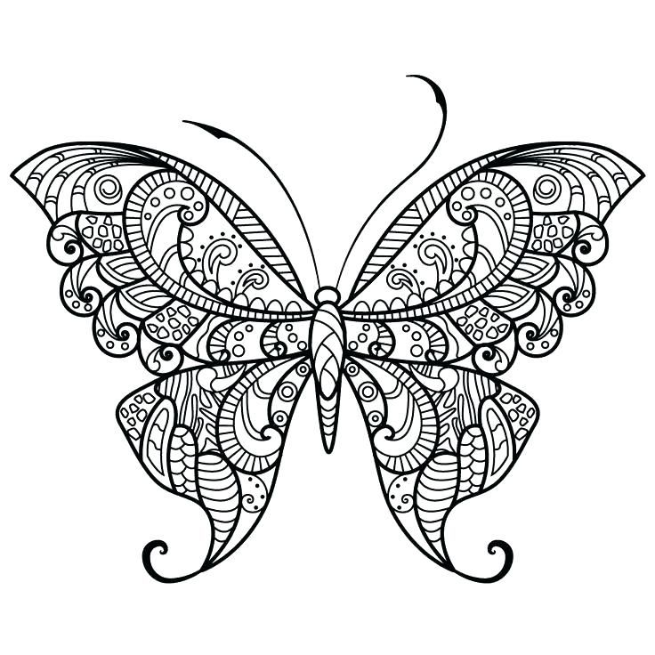 Butterfly Coloring Pages For Adults Best Coloring Pages For Kids Butterfly Coloring Page Printable Flower Coloring Pages Mandala Coloring Pages