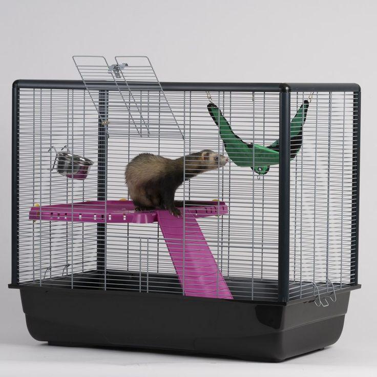 1000 id es sur le th me cage furet sur pinterest cage pour furet furet et octodon. Black Bedroom Furniture Sets. Home Design Ideas