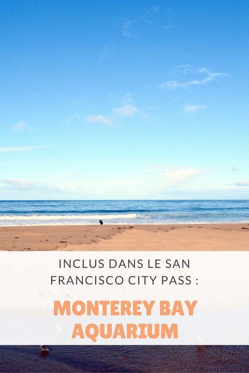 San Francisco CityPASS : Monterey Bay Aquarium