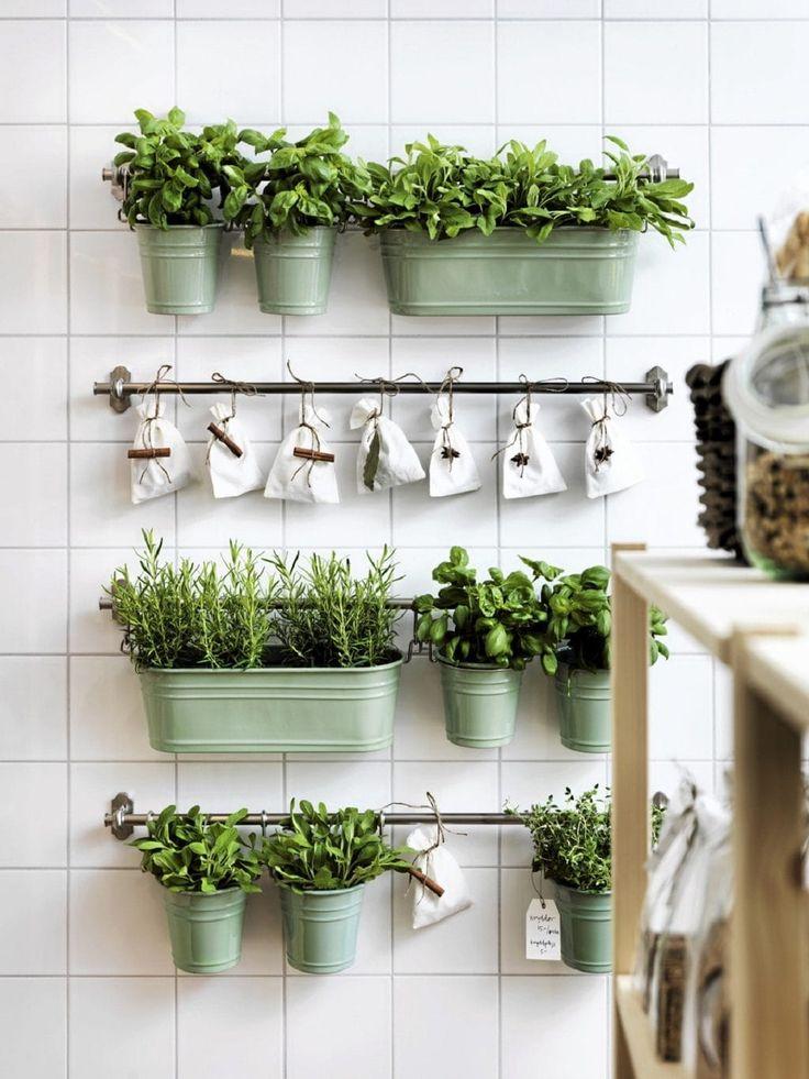 Organizzare le erbe aromatiche in casa: appendere le piante su una parete - #DIY #herbs #organize #homeideas