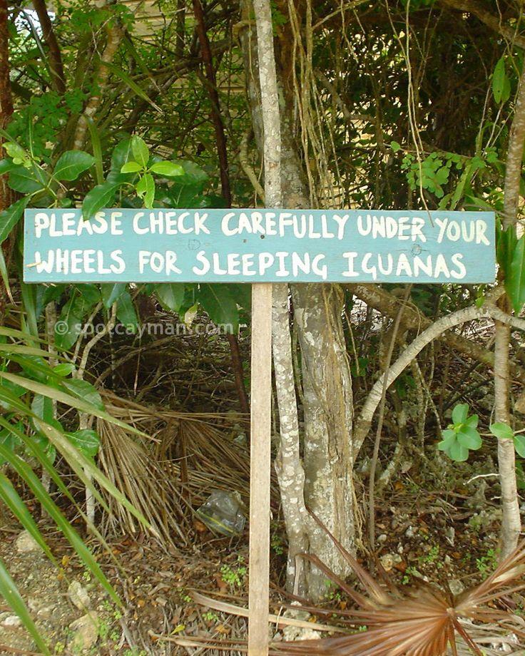 Cute sign at the Queen Elizabeth II Botanic Park in Grand Cayman, Cayman Islands