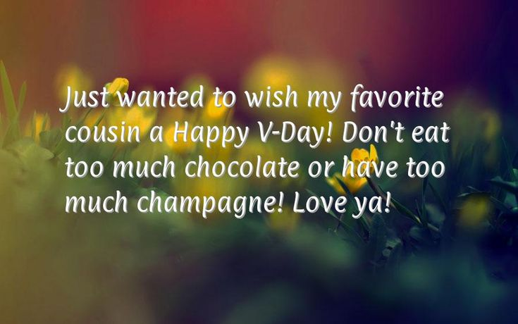 Just wanted to wish my favorite cousin a Happy V-Day! Don't eat too much chocolate or have too much champagne! Love ya!
