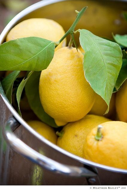I have lemon on my mind.  I wish I had some of my sisters lemon bars!  @Angela Stark