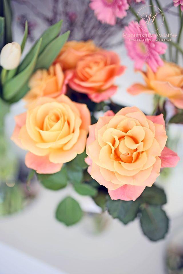 #flower #flowers #pink #white #orange #roses #basket #compozition #elegant #style #love #flowerdesign #florist #flowershop #kwiat #kwiaty #roz #biel #pomarańcz #roze #kompozycja #koszyk #elegancki #styl #miłość #kwiaciarnia #manufakturakwiatow