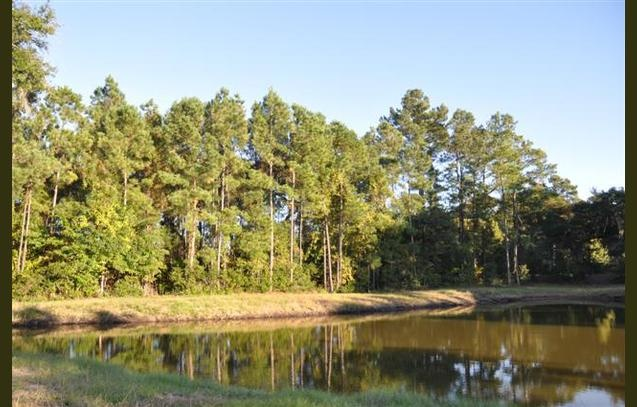 Priced like a foreclosure, this water view lot has a nature preserve behind it!: Natural Preserves, View Lots, Water View