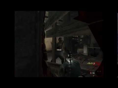 As the title says - I was having fun killing the nazi zombies in Call of duty Black Ops