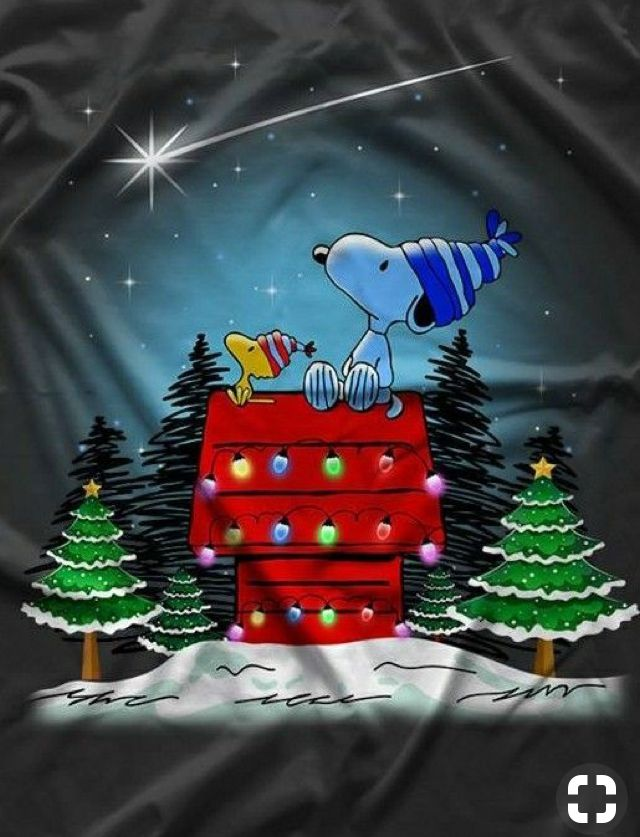 Wish Upon A Star Funny Christmas Pictures Christmas Pictures Friends Snoopy Christmas