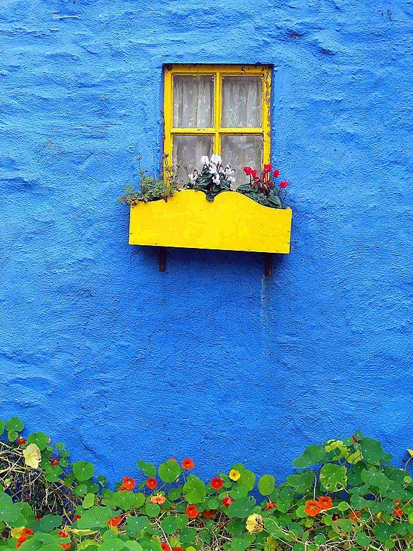 There is no blue without yellow and without orange- Van Gogh