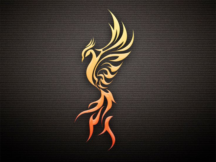 My next tattoo! Love the #Pheonix