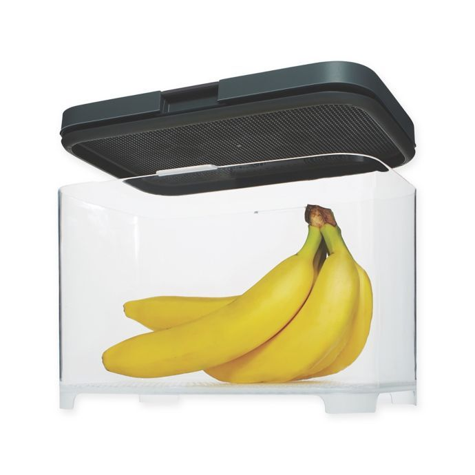 Rubbermaid Freshworks Countertop Produce Container With Lid In