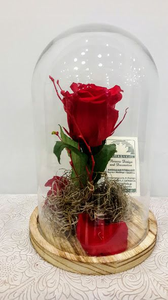 Beauty and the Beast Red Rose in Glass forever rose